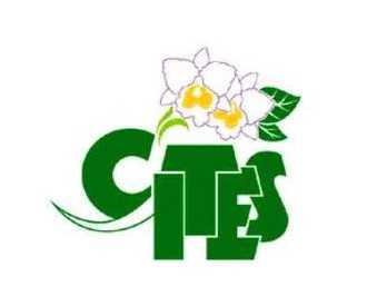 CITES / Phytosanitary certificate