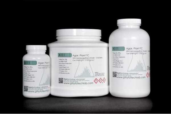 Agar micropropagation grade Dosis de 10g