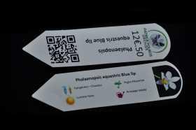 Etiquetas personalizadas de identificación