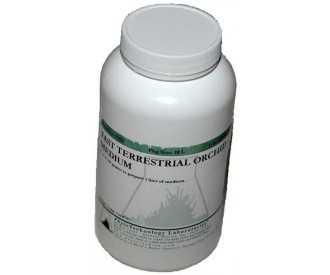 F522-1L FAST TERRESTRIAL ORCHID MEDIUM