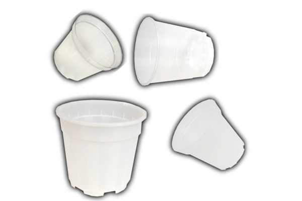 Pots plastique transparents de 8 à 19 Cm